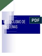 Clase Nc2b012 Matabolismo de Aminoacidos Bioq Tec 2011