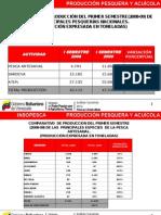 Reporte Insopesca 2009