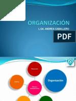 4. Organización