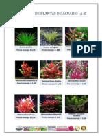 Catalogo Plantas Acuario A-Z www.webacuarios.com