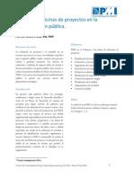 pmo_gobierno 1
