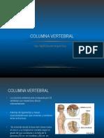 Columna vertebral gralidades.pdf