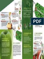 Ecoetiquetas.pdf