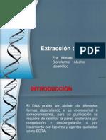 Molecular Uap (1)