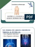 Aparato Reproductor Femenino Complet