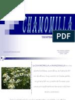 CHAMOMILLA Tropismos Pereyra