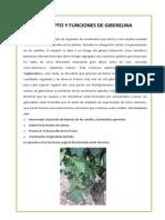 Concepto y Funciones de Giberelina