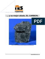 Historia Del Carbon