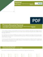 infografia_primera_encuesta_nacional.pdf