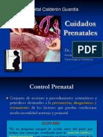 1.Atencion y Cuidados Prenatales