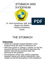 Dr. Henk K-The Stomach and Duodenum