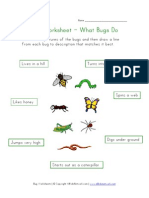 Bugs Worksheet