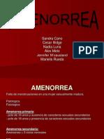 Amenorrea Sin Mjn