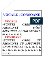 vocale, consoane