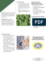 Leaflet Penyebaran Penyakit