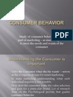 4. Consumer Behaviour