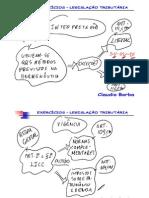 claudioborba-direitotributario-teoriaeexercicios-120