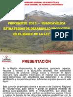 Presentacion Marco Del Procompite