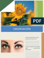 2-Observación
