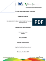 Establecimiento de Un Vivero Forestal Pinus Ayacahuite - Copia