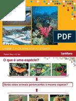 1-osseresvivoseoambiente-110915140005-phpapp02