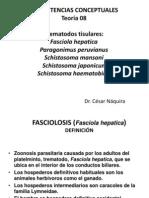 USMP-TREMATODOS