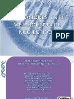 metabolismodenucleotidosysusalteraciones-101103190152-phpapp02