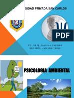 Psicologia Ambiental 2013 - II San Carlos