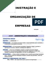 1 - ADMINISTRAÇÃO E  ORGAN. VISÃO GERAL