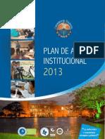 Plan de Acción Institucional 2013