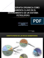 PETROGRAFÍA ORGÁNICA_CARLOS PARRA_UIS-petromod.pdf