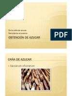 Presentación1DE LAREMOLACHA Y LA CAÑAAL AZUVAR