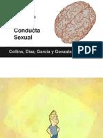 El Cerebro y La Conducta Sexual (incompleto)