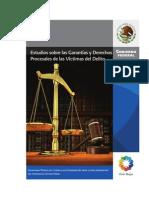 Estudios sobre las Garantías y Derechos