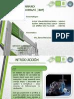 PresentaciónCBM.pptx