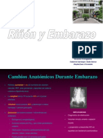 Medio Interno Renal y Embarazo
