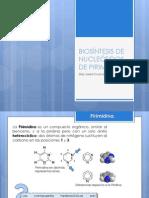 BIOSÍNTESIS DE NUCLEÓTIDOS DE PIRIMIDINAS.pptx