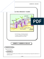 4to. año - BIOL - Guia 3 - Cubierta y membrana celular