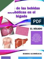 Efectos de las bebidas alcohólicas en el hígado