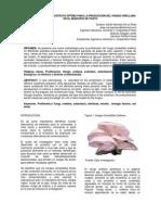 sustratoOptimoProduccionHongoOrellana.pdf