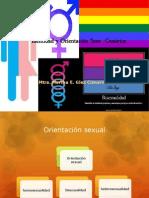 Identidad y Orientacion Sexo-generica
