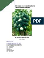BUENASPRACTICASPAPAYA.pdf1