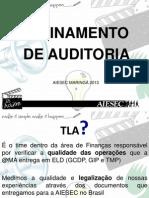 10260869_Treinamento_Auditoria