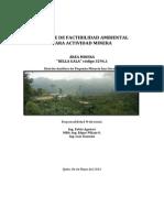 Informe de Factibilidad Ambiental Bella Gala