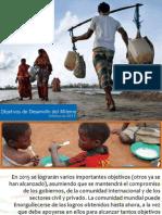 Informe PNUD 2013
