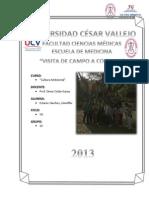Informe Salida de Campo (Conache)
