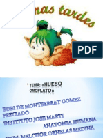 omoplato-121006133246-phpapp01