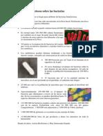 Datos Bacterias (1)