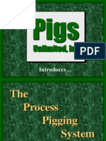 Process Pigging System