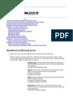 Curs Access1